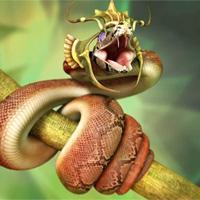 Vì sao loài người tôn thờ rắn?