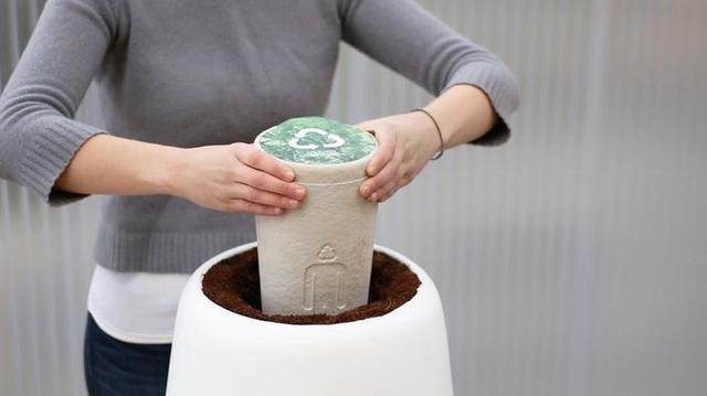 Bios Urn có khả năng tự động tưới nước cho cây và được giám sát bởi điện thoại thông minh.