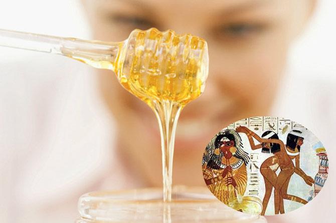"""""""Áo choàng tử cung"""" bằng mật ong"""