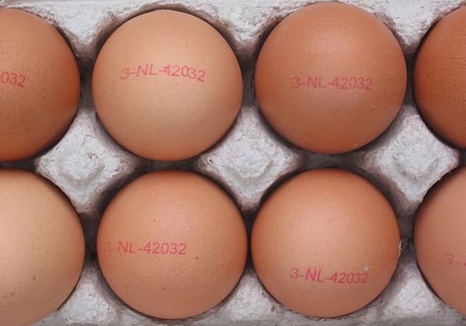 Bạn đi vào một tòa nhà 100 tầng. Các quả trứng có thể rất cứng hoặc rất dễ vỡ, có nghĩa là nó có thể vỡ khi rơi từ tầng một nhưng cũng có thể không sao khi rơi từ tầng 100. Hai loại trứng này có vẻ ngoài hoàn toàn giống nhau. Bạn cần chỉ ra tầng cao nhất của tòa nhà 100 tầng mà quả trứng không vỡ khi bị thả xuống. Vậy, bạn cần thả trứng bao nhiêu lần. Trong quá trình này, bạn được phép làm vỡ hai quả?
