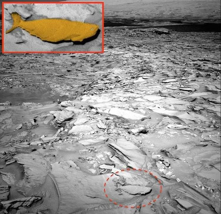 Đã tìm thấy bằng chứng chứng minh sao Hỏa từng bị bao phủ bởi một đại dương khổng lồ.