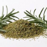 Phát hiện loại rau thơm giúp người thọ trăm tuổi