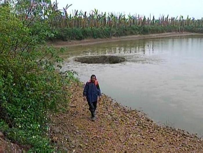 Ông Yang đã mất trắng hồ cá trị giá 1,8 tỷ VNĐ.