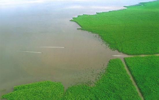 Tỉnh Cà Mau có thể biến mất hoàn toàn trong vài thập kỷ tới nếu không dừng bơm nước ngầm.