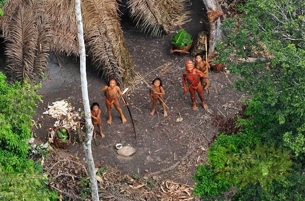 Tồn tại nhiều bộ tộc chưa ai biết tới đang sống rải rác trong rừng.