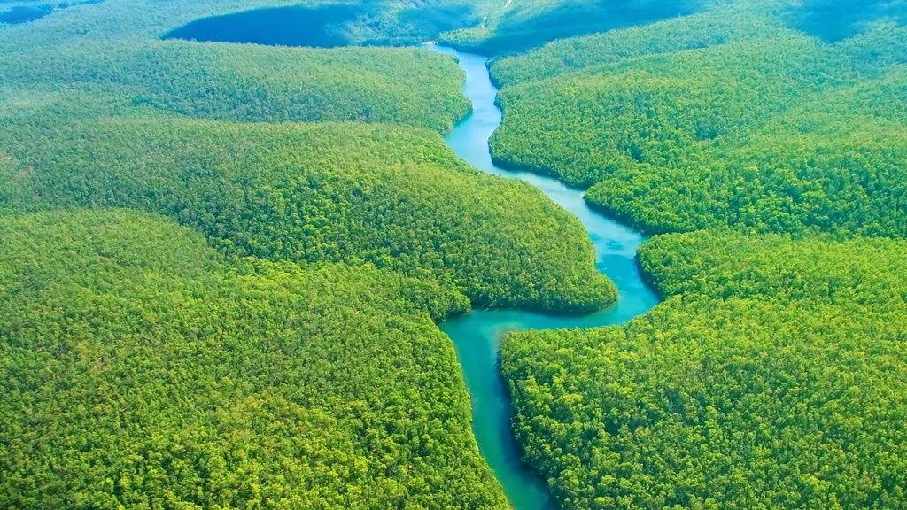 Amazon có diện tích rộng lớn, tương đương Châu Úc.