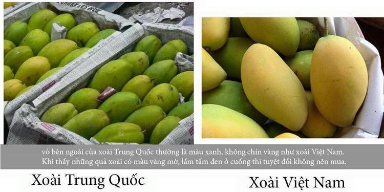 Xoài Trung Quốc sử dụng hóa chất để thúc chín nên có màu sắc không tươi sáng.