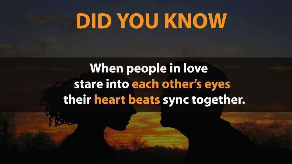 Sự thật về yêu