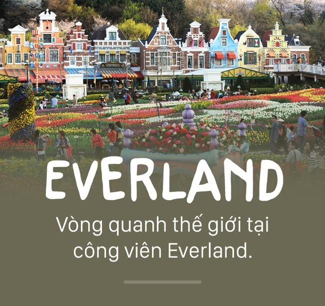Vòng quanh thế giới tại công viên Everland.