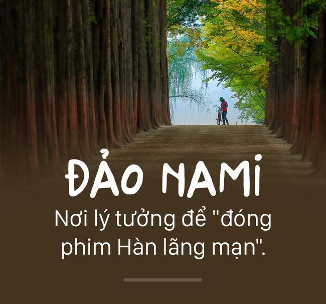 Đảo Nami là nơi lý tưởng để đóng phim Hàn lãng mạn.