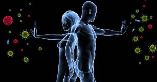 Sức khỏe đời sống-Hệ thống miễn dịch trở nên giống nhau khi chúng ta ở cùng nhau