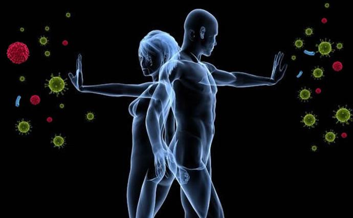 Hệ thống miễn dịch của 2 người sẽ trở nên giống nhau khi cùng chung sống.