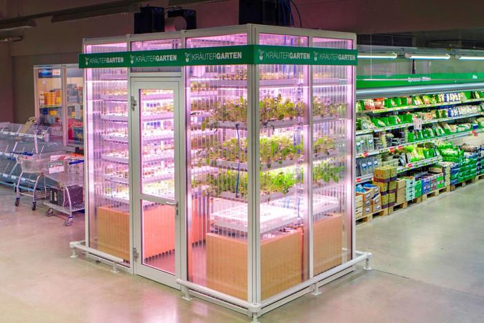 Hình ảnh Kräutergarten tại một siêu thị tại Đức.