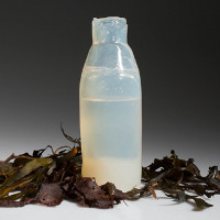 Ý tưởng chai nước làm từ thạch, phân hủy ngay sau khi sử dụng