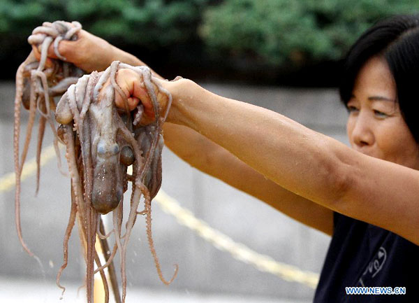 Bạch tuộc thật có phần thân rõ ràng, phần thịt, râu không mềm nhũn như bún ngâm nước.