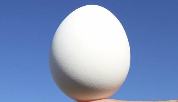 Chúng ta có thể đặt quả trứng cân bằng trên tay vào mọi thời điểm trong năm.