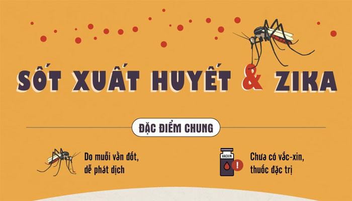 Bệnh sốt xuất huyết và Zika đều do muỗi vằn đốt và hiện tại chưa có vắc xin đặc trị.