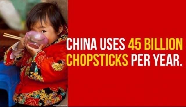 Trung Quốc sử dụng 45 tỷ đôi đũa mỗi năm.