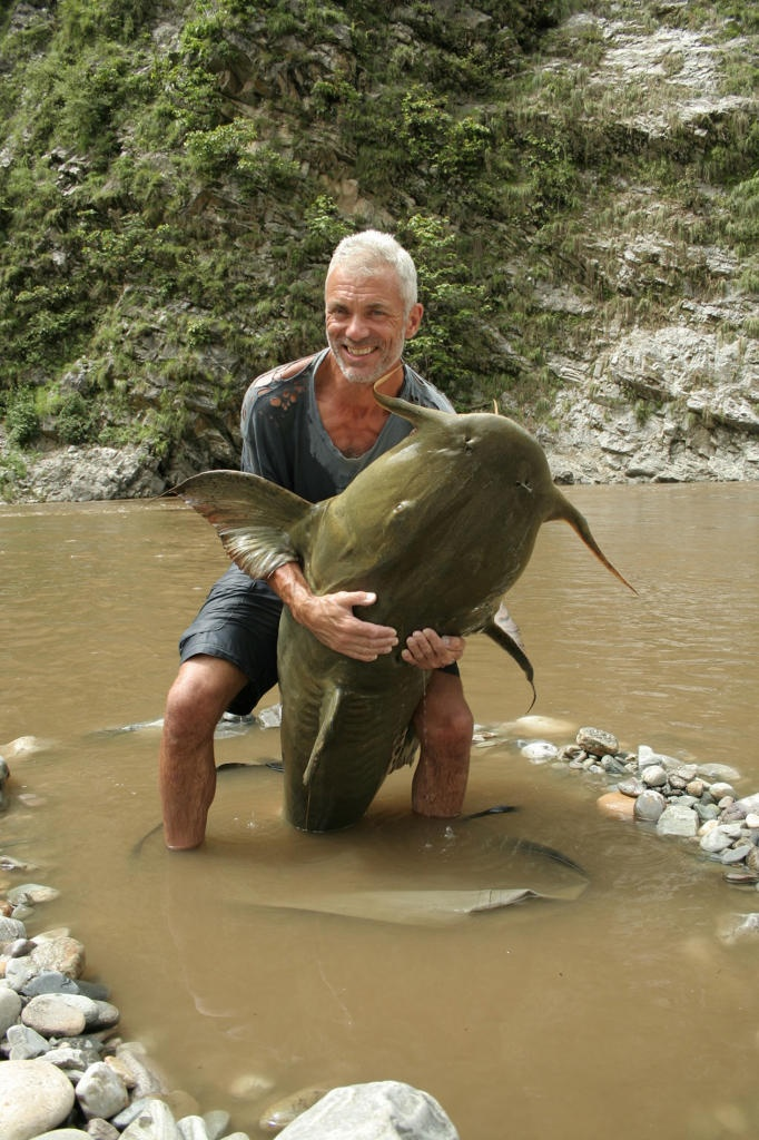Cá chiên sông (Bagarius yarrelli)