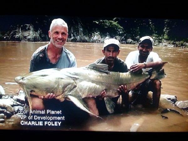 Con Giant Devil, loài cá khổng lồ được ngư dân Ấn Độ cho là đã từng kéo rất nhiều người xuống sông và ăn thịt.