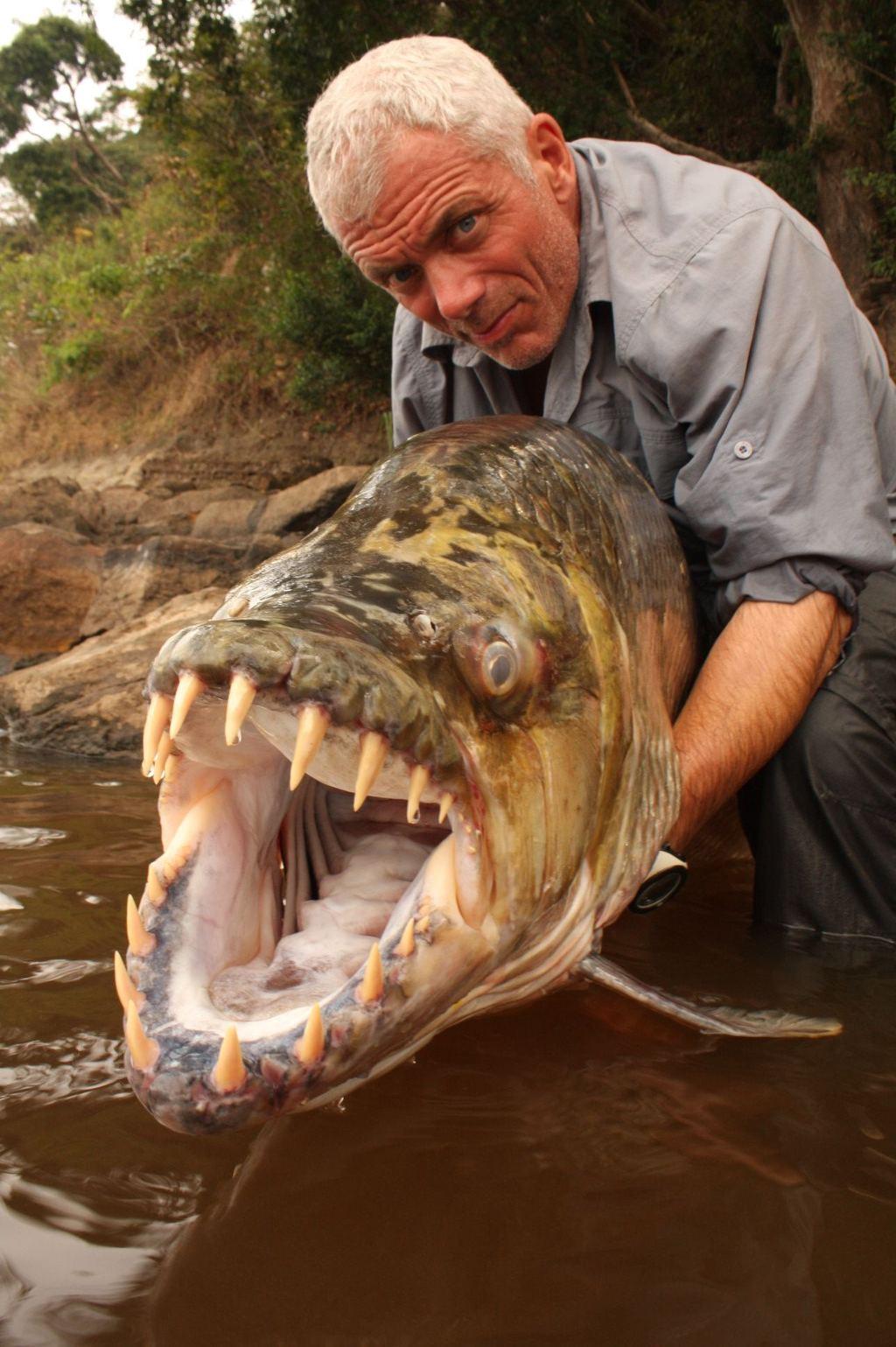Trong 1 lần đi câu, ông đã săn được Goliath Tiger - loài cá có hàm răng to và sắc nhọn như dao cạo ở Congo.