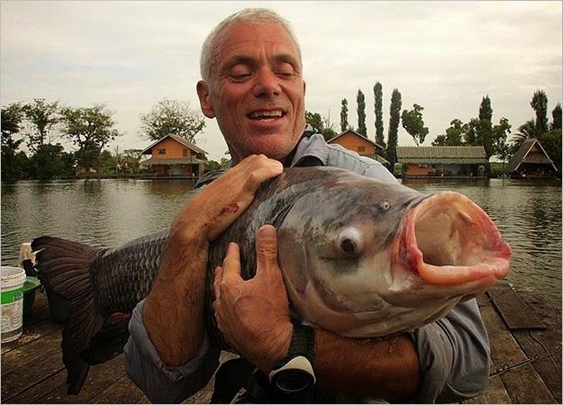 Jeremy Wade đang ôm một con cá chép Thái ông vừa bắt được ở sông Mekong. Con cá này còn non và kích thước của nó chỉ bằng 1 phần rất nhỏ kích thước khi trưởng thành. Một con cá chép Thái trưởng thành có thể đạt chiều dài hơn 3m và nặng gần 300kg. Đây là một trong những loài cá nước ngọt lớn nhất trên hành tinh.