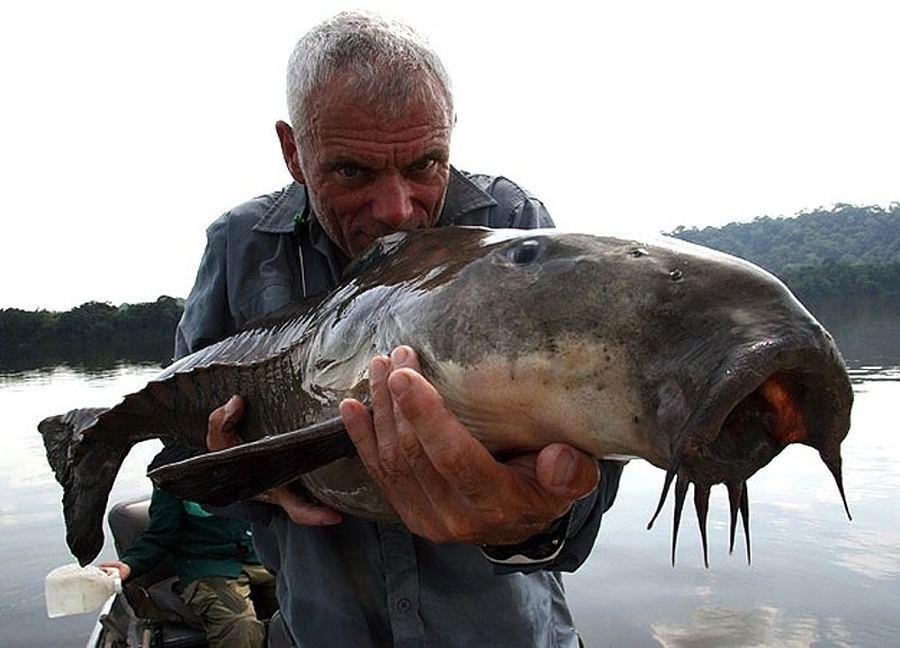Một con cá Cuiu Cuiu - loài cá trê có từ thời tiền sử này đã bị Jeremy tóm ở Orinoco gần khu vực Amazon. Loài cá này có thể đạt chiều dài 1m và nặng khoảng 20kg khi trưởng thành. Dọc theo mạng sườn của nó có những chiếc xương nhô ra, khiến chúng có hình dạng như những chiến binh mặc áo giáp.