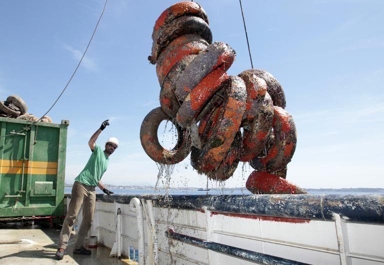 Chính phủ các nước bắt đầu thực hiện chiến dịch trục vớt lốp xe phế thải.
