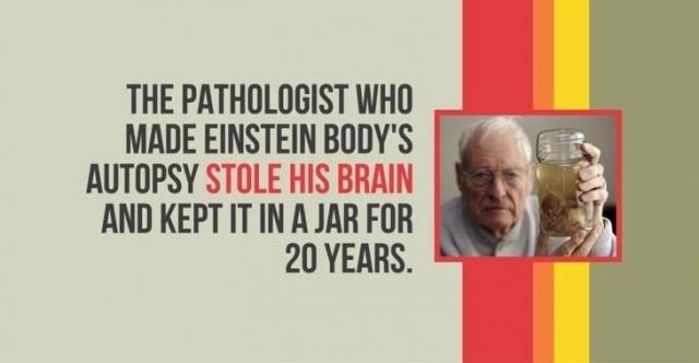 Các nhà nghiên cứu bệnh ở người khám nghiệm tử thi cơ thể của Einstein đã đánh cắp não của ông và giữ nó trong một cái bình trong 20 năm.