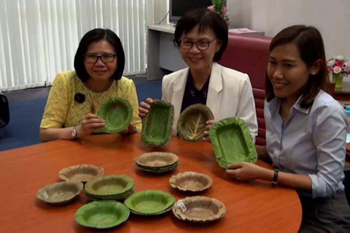 Các thành viên của nhóm nghiên cứu Đại học Naresuan chụp ảnh bên những chiếc bát đựng thức ăn không thấm nước từ lá cây.