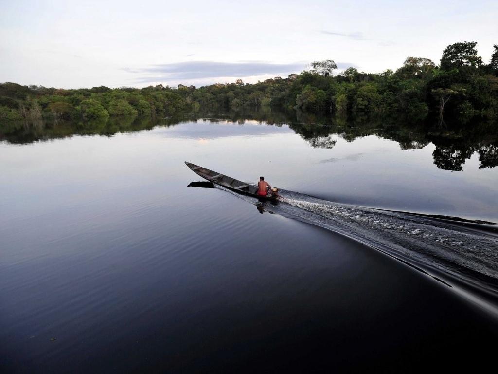 Ngồi thuyền trên sông Amazon, con sông lớn thứ hai thế giới và là nơi ở của hơn một phần ba động vật trên thế giới.