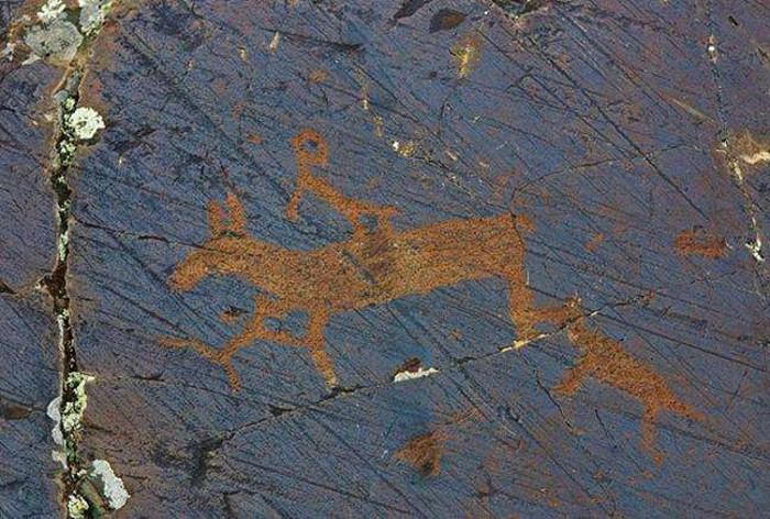 Ngoài ra các bức tranh còn cho các nhà khoa học biết về những động vật đã từng sống trong khu vực dãy Altai như voi ma mút, đà điểu, tê giác, voi, hổ...