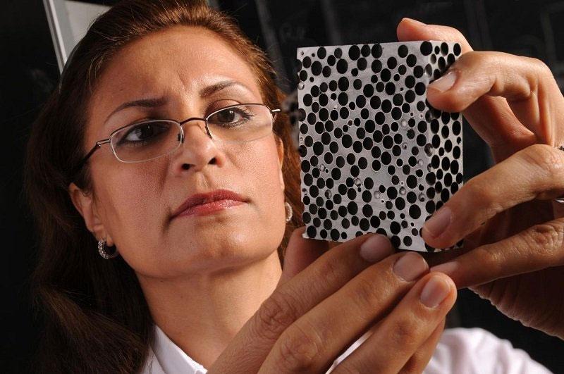 Bà Afsaneh Rabiei - trưởng nhóm nghiên cứu.