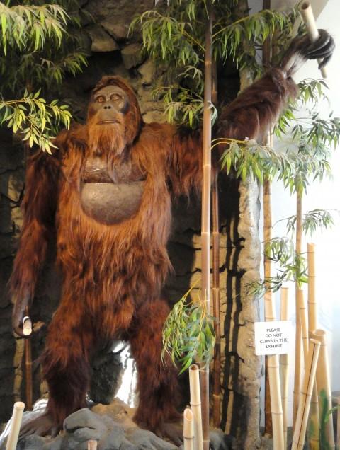 Gigentopithecus