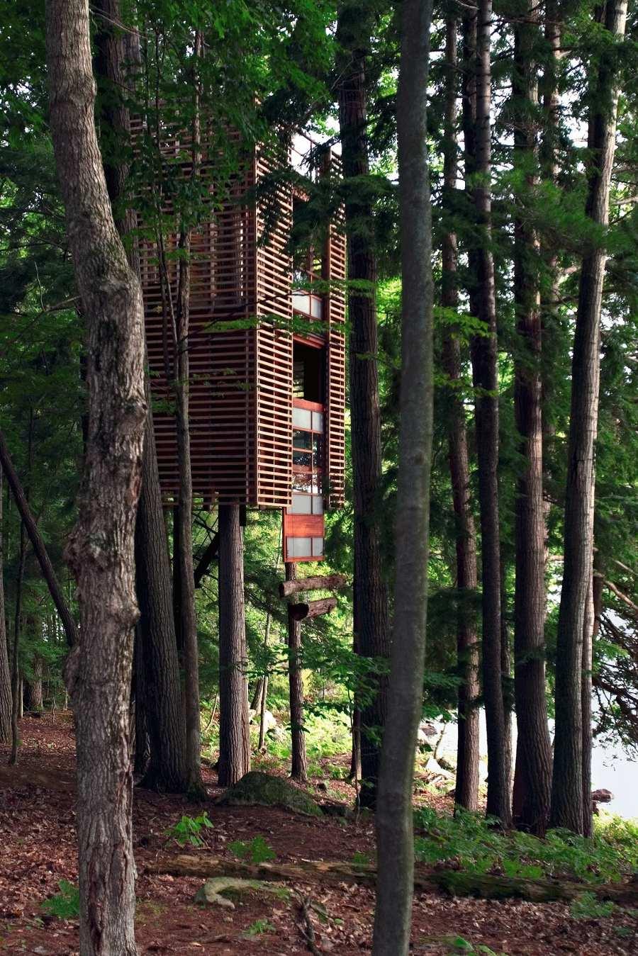 4 Treehouse được xây dựng xung quanh bốn thân cây trên hồ Muskoka ở Ontario, Canada, và bồng bềnh trong không khí như một chiếc đèn lồng lớn của Nhật Bản.