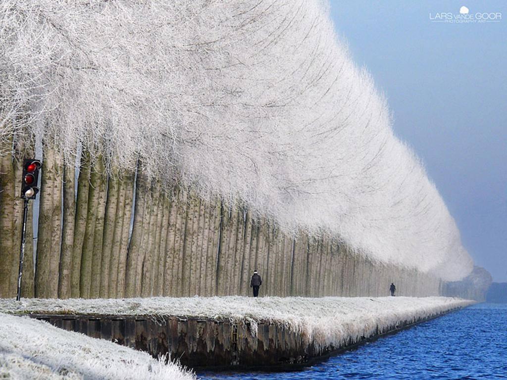 Khung cảnh mùa đông ở Grabovica, Serbia