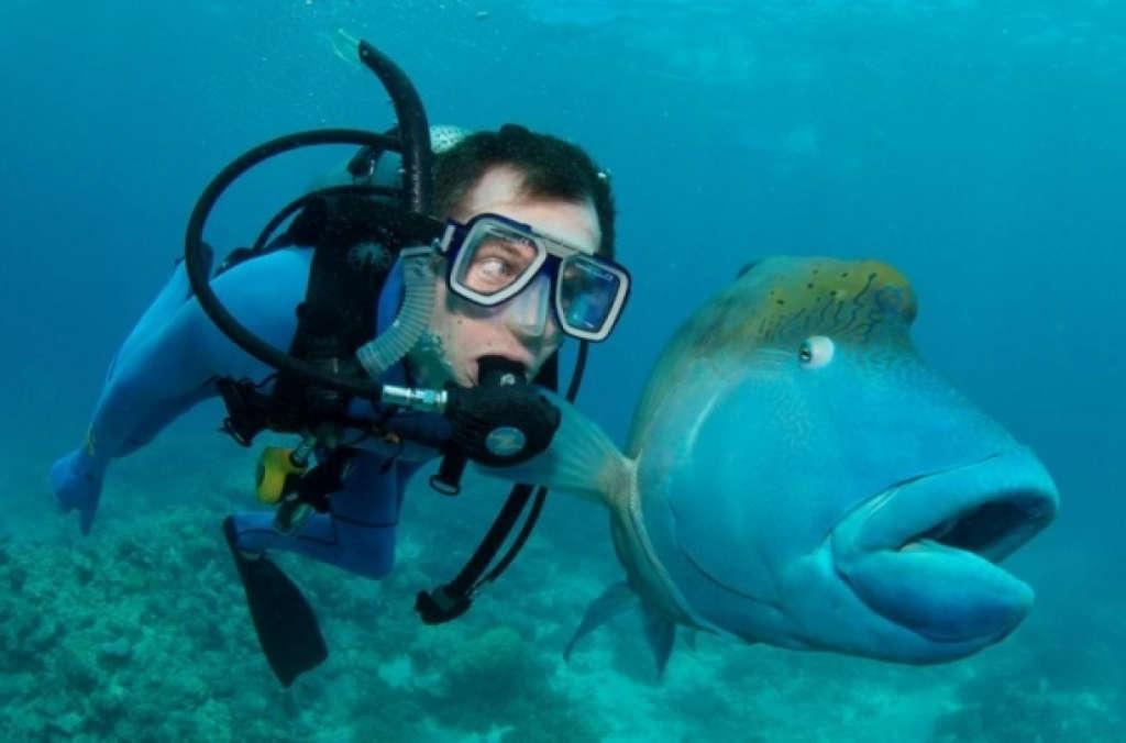 Lặn dưới biển