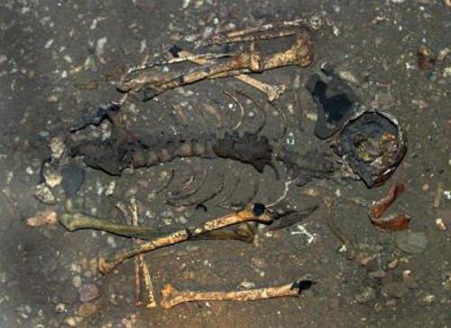 Di chỉ xương người tiền sử được tìm thấy tại Di chỉ khảo cổ Lenggong.