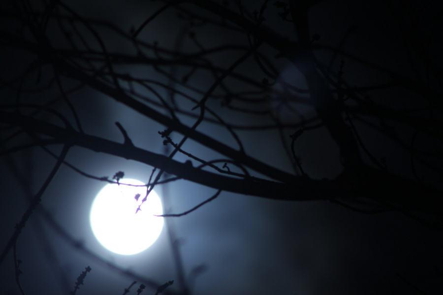 Một giả thuyết phổ biến khác cho rằng có mối liên hệ giữa trăng tròn và chu kỳ kinh nguyệt của phụ nữ. Tuy nhiên, giới chuyên gia chưa thể tìm ra những bằng chứng khoa học cho thấy mối liên hệ giữa chu kỳ kinh nguyệt với mặt trăng.