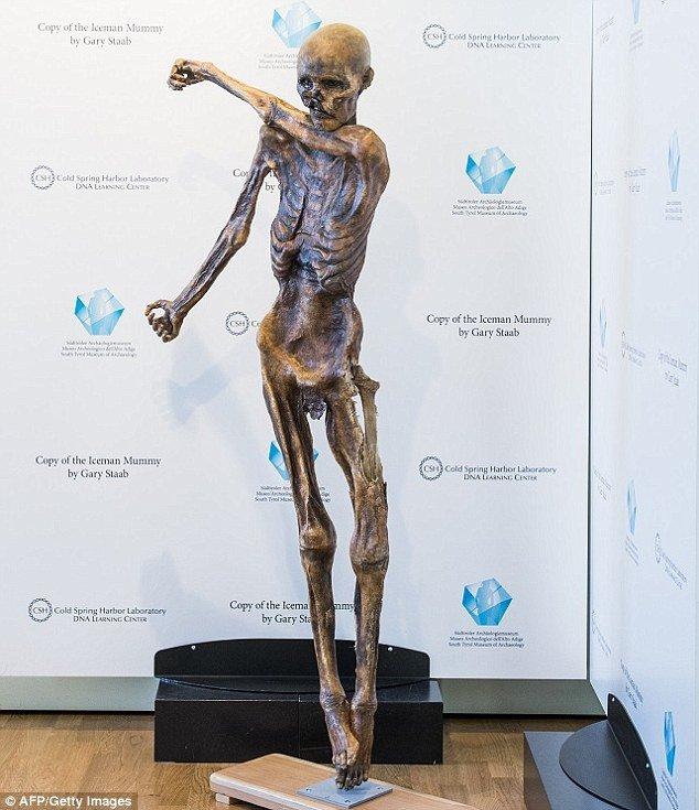 Trước hết, các nhà khoa học phục dựng 1 mô hình 3D của người băng Otzi.