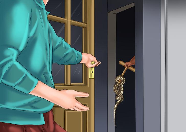 Nếu con rắn ở một góc khuất nào đó như ngăn kéo, góc tủ thì hãy để yên nó.