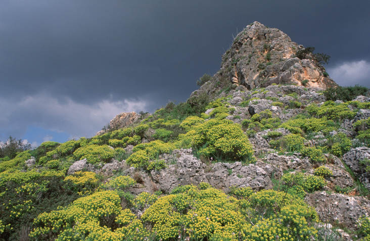 Di chỉ khảo cổ trên núi Lạc trải dài hết cả sườn núi xuống rặng san hộ bên bờ Địa Trung Hải