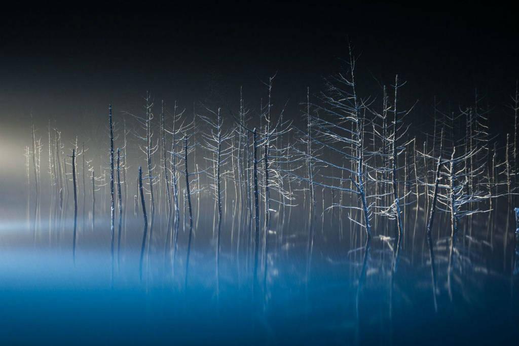 Những thân cây khô trên hồ nước giống như những vũ công ballet duyên dáng. Hồ nước này nổi tiếng với màu xanh huyền thoại, nằm ở Biei, Hokkaido, Nhật Bản.