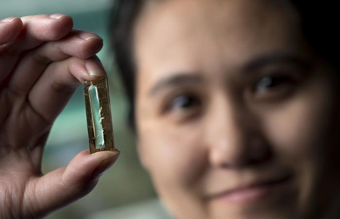 Mye Le Thai và viên pin lithium làm từ nano.