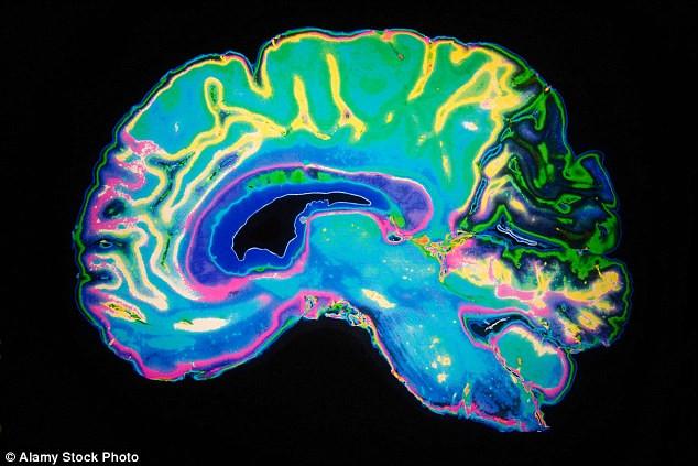 Mục tiêu của dự án là xác định khả năng hồi phục và tái thiết lập chức năng của hệ thần kinh trung ương.