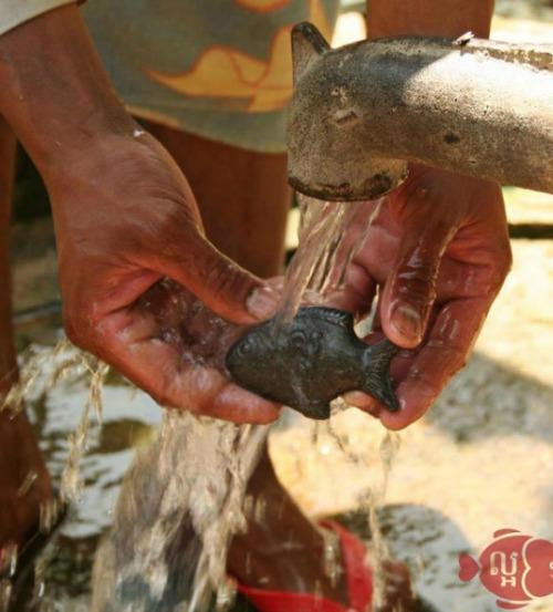 Sau khi nấu lấy cá sắt ra, cho thêm chút nước cốt chanh vào.