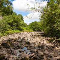 Thêm hai con sông biến mất chỉ sau một đêm ở Mexico