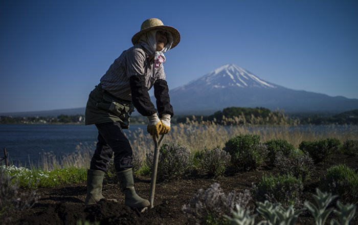 Người nông dân Nhật Bản.