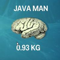 Video: Kích thước não người so với các loài vật khác