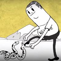Video: Con người đã hủy hoại thiên nhiên như thế nào?
